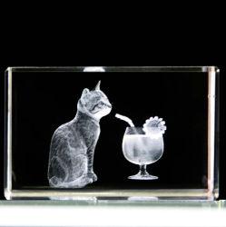 Grabado con láser 3D Cristal animales Cube Craft