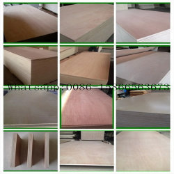 Okoume 또는 포플라 또는 Bintangor 또는 소나무 /Pencil 삼목 또는 Sapele에 의하여 직면되는 상업적인 합판 또는 가닥