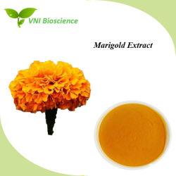 Natural puro Marigold extrato da planta para a Prevenção da Aterosclerose