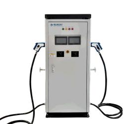 120kw Chademo CCS2/DC de niveau 2 chargeur EV Deux Connecrot deux Evse d'affichage de charge rapide de véhicule électrique