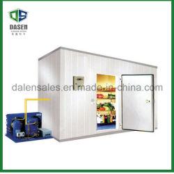Proveedor profesional de buena calidad de almacenamiento en frío