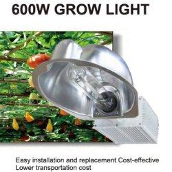600W HPS et Mh grandir la lumière en 55000 à 90000 lumens