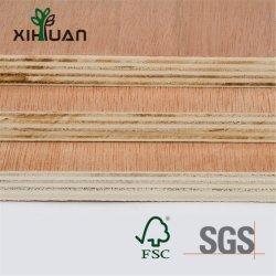 良質のシラカバの合板は木をタイプする