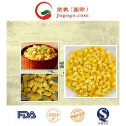 Ensemble de la vente surgelés IQF de maïs et de légumes surgelés