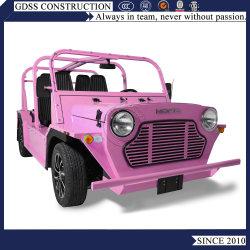 La gasolina paseos de buggy Car marcos de aluminio vehículo especial