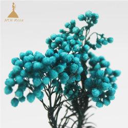 2018新しく自然な維持された装飾的な米の花