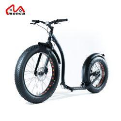 2018 Novo Design Pneu Gordura Electric Kick Scooter E CHUTAR scooters e bicicletas de Equilíbrio de motociclo