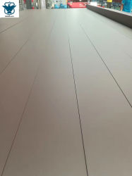 Rifinitura verticale della superficie di profilo dell'espulsione dell'Riga-Alluminio di produzione del rivestimento della polvere