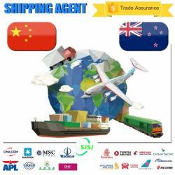 Spedizione via mare FCL spedizioniere dalla Cina ad Auckland nuovo Zealand Professional servizi logistici veloci e affidabili