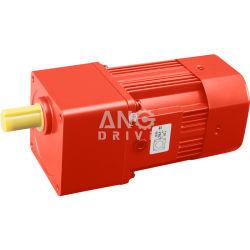 Micro de inducción eléctrica AC Motor de la reducción de marcha