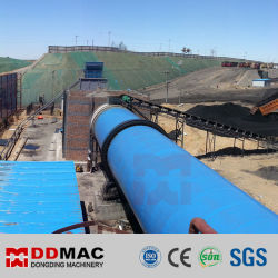 Bruinkool Slime Coal Powder Rotary Drum Dryer Top Manufacturer