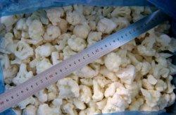 Heißer Verkaufs-neuer Getreide-IQF gefrorener Gemüseblumenkohl-Reis