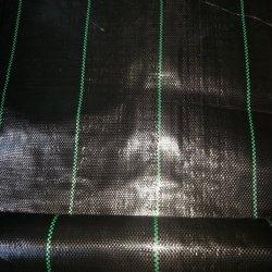Gesponnenes Säubern-Tuch des Geotextile-100ggarden des Säubern-Geotextile/PP