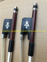 Pernambuco fibra di carbonio Cello Bow Horse Hair 4/4