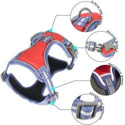 Accessori all'ingrosso esterni portatili riflettenti leggeri registrabili dell'animale domestico della cassaforte respirabile del cablaggio del cane