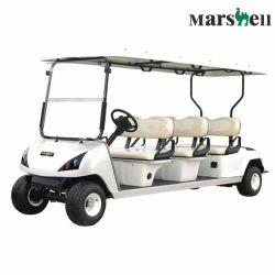 골프 (DG-C6)를 위한 관례 6 시트 편리한 전차