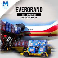Fiable / Shenzhen Guangzhou / Hong Kong Air Cargo Service d'expédition de fret
