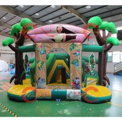 Caminhão PVC Slide insufláveis saltar de um leito/encantador Castelo Saltos Brinquedos infláveis
