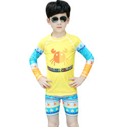 De Lange Kokers Swimwear van de Jongens van Sbart voor het Surfen