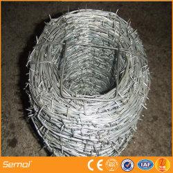 China-Qualitäts-Kurbelgehäuse-Belüftung galvanisierter Stacheldraht für Verkauf