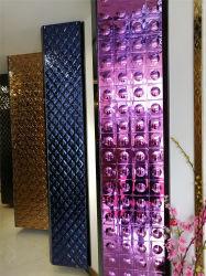 304 het in reliëf gemaakte Decoratieve Blad van het Roestvrij staal voor Deur KTV
