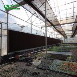 La refrigeración de invernaderos agrícolas baratos cortina húmedo con una buena calidad