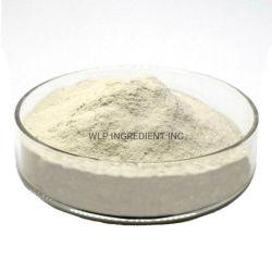 Natürliches Austeren-Shell-Auszug-Puder (Austeren-Shell-Puder) für Leber-Gesundheit