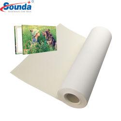 방수 평야 공백 순수한 면 직물 롤 색칠 화포 도매 /100 % 폴리에스테