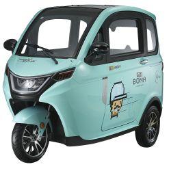 Euro 5 1500W 60V 80Ah 전기 3륜 구동