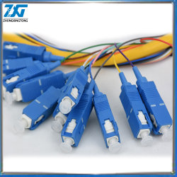 12 Kerne SC/PC 900um Singlemode Bundle Lüfterausgang Fiber Optic Pigtail