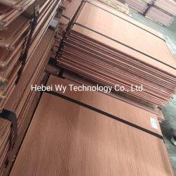 Venda a quente/Alta Pureza e barato/99,99% de cobre catodo/ Cobre eletrolítico