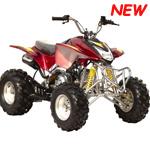 125cc Quad ATV Bike für den Einsatz