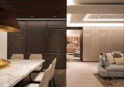 Meubilair van de Luxe van het Comité van de Muur van de Deur van de Garderobe van het hotel/van de Villa/van de Flat/van het Huis het Keuken Vaste Moderne