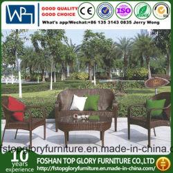 Гостиная садом открытый PE плетеной диван с чаем в таблице (TG-258)