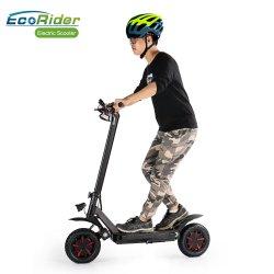 Ecorider 도로 서 있는 성숙한 걷어차기 스쿠터 떨어져 최신 디자인 기름 브레이크 2 바퀴 이중 모터 전기 스쿠터,