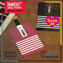 Imee kundenspezifisches Drucken-Förderung-Geschenk 1g zu 256g USB 2.0 3.0 Feder-VisitenkarteWristband Keychain U Platte