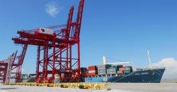 Профессиональные дешевле лучших LCL океана грузовых перевозок в Нагою