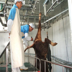 장비 또는 Halal 도살 또는 고능률을 학살해 가축