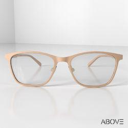 Produttore vetro ottico in vetro Eyeglass con cerniera in metallo Unisex Pei