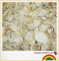 Pleurotus Eryngii Fatia de cogumelos secos