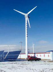 sistema di generatore orizzontale di potere della turbina di vento di 50kw 380V per la casa