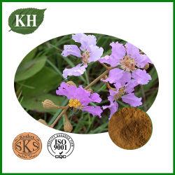 Fabrication extrait de feuilles Banaba Corosolic Acid 1%-10% de la HPLC