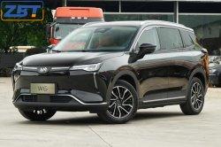 China New Energy Electric Vehicle W6 2WD Fwd 4X2 EV SUV Carlife Elektroauto mit unbemannten automatischen Parksystem