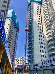 Convertidor de frecuencia de alta velocidad de la construcción de la cadena de grúa de construcción eléctrica