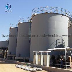 La agitación de lixiviación con cianuro la extracción de oro de la planta CIP CIL