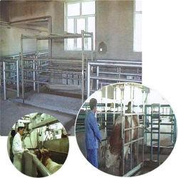 自動デザインラインおよび機械装置または牛虐殺