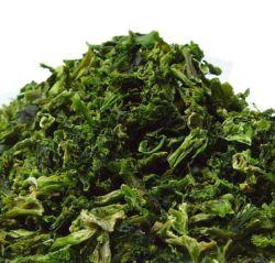 Broccolo liofilizzato cavolfiore sano delle verdure di acquisto all'ingrosso