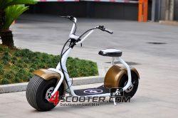 800 Вт/1000W используется города мотоциклов Коко электрический скутер с подсветкой