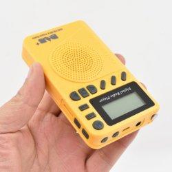 Radio Pocket di Digitahi della LIMANDA con la ricevente Bandiii del MP3 DAB/DAB+: 170-240MHz FM: regolazione DAB-P9 di tempo di sonno della visualizzazione dell'affissione a cristalli liquidi del giocatore di 87.5-108MHz TF MP3