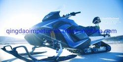 EEC&EPA 300cc 자동적인 전기 시작 사슬 구동 Snowmobile
